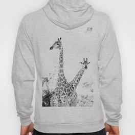 between giraffes Hoody