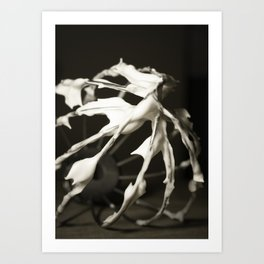 Whipped to a Frenzy Art Print