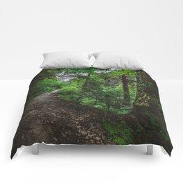 Trailblazing Comforters