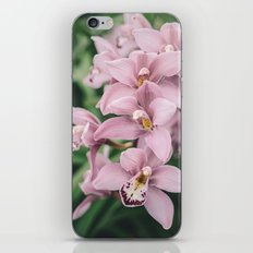 Orchid cascase iPhone & iPod Skin