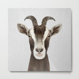 Goat - Colorful Metal Print
