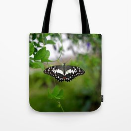 Butterfly Small Tote Bag