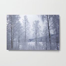 Norwegian Winter Metal Print