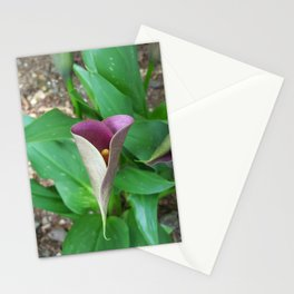 Mother Nature's Heartwork Stationery Cards