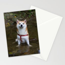 KUMA: Shiba In River 1 Stationery Cards