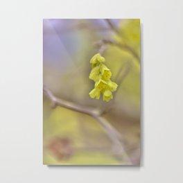 Yellow Springtime Yearning Metal Print