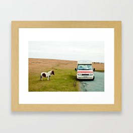 Dartmoor Pony Fancies an Ice Cream Framed Art Print