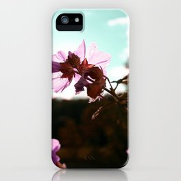 In the Sun iPhone Case