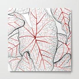 Heart leaves 2 Metal Print
