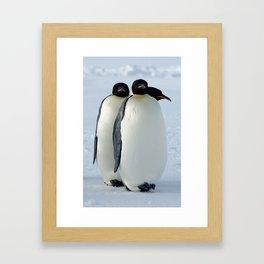 Emperor Penguins Huddled Framed Art Print