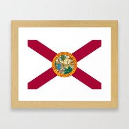 Flag of Florida Framed Art Print