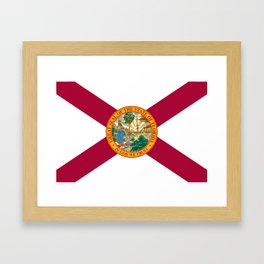 Flag of Florida Framed Art Print
