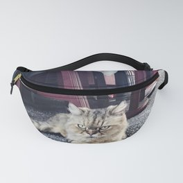 Cats - Angry Cat (Taiwan) Fanny Pack