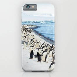 Marching Adelies at Brown Bluff, Antarctica iPhone Case