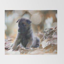 Beautiful puppies in autumn leave Throw Blanket