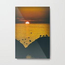 Seagulls in the sunset light Metal Print