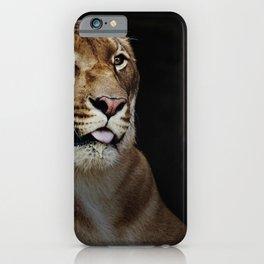 Hercules the liger half lion half tiger iPhone Case