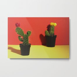 Red and Yellow Cactus Metal Print