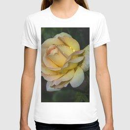 Pretty yellow rose T-shirt