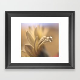 Waterbead Framed Art Print