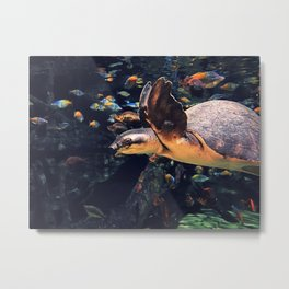 The Exotic Sea Turtle Metal Print