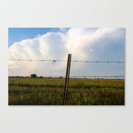 Wire, grass and clouds Canvas Print