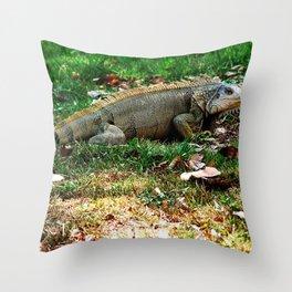 Gallina de palo 2 @ Rincon Throw Pillow