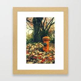 boca de riego Framed Art Print
