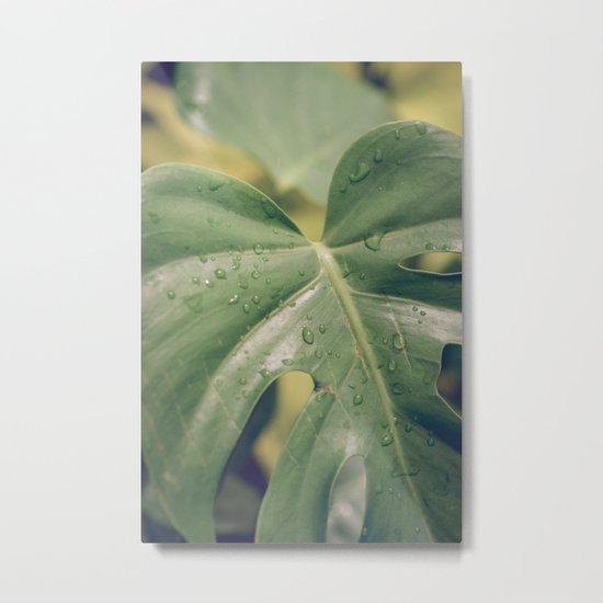 Philomena Philodendron Metal Print