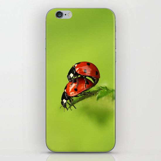 Ladybirds in spring iPhone & iPod Skin