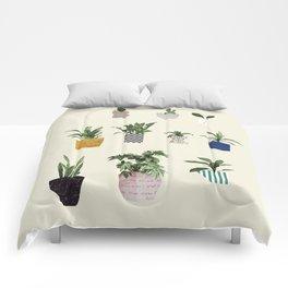 HOUSE PLANTS Comforters
