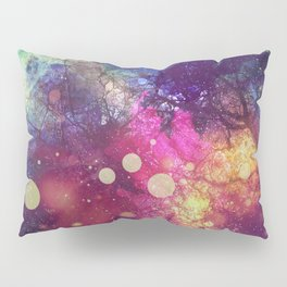 The Universe Behind Pillow Sham
