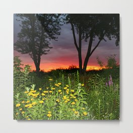 Sunset Over a Wildflower Field Metal Print