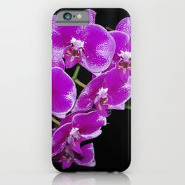 Graceful spray of deep pink orchids iPhone Case