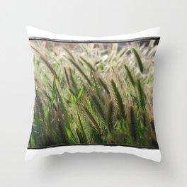 Soft Breeze Throw Pillow