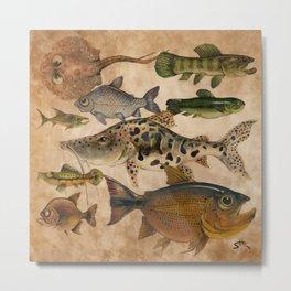 Peces de rio Metal Print