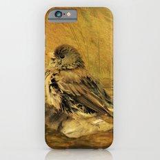 The Bathing Junco Slim Case iPhone 6s