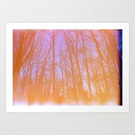 Expired Winter Colors Art Print