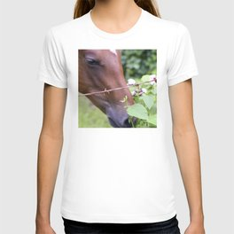 Tropical Island-Style Horse Eating Leaves T-shirt