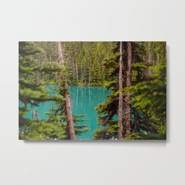 Through the Trees at Lesser Lake Garibaldi Metal Print