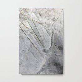 Straws and twig encased under ice. Metal Print