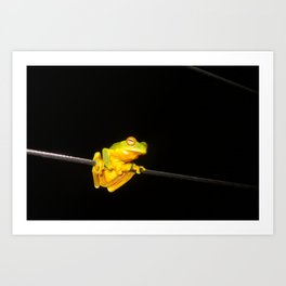 Hanging around Art Print