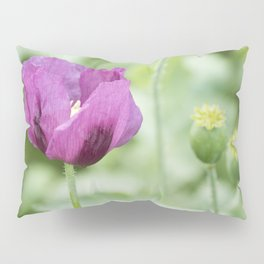 Hungarian Blue Bread Seed Poppy With Seed Pods Pillow Sham
