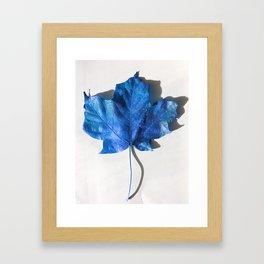 Blue Leaf 1 Framed Art Print