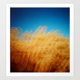 Wheat Waiver Art Print