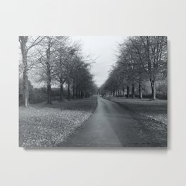 A Winters Day. Metal Print