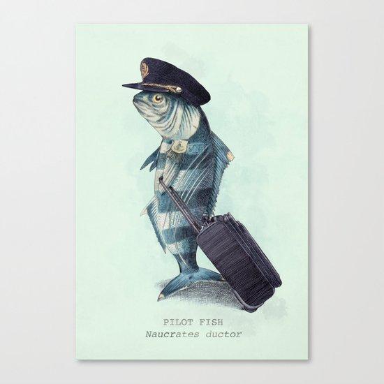The Pilot (colour option) Canvas Print