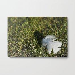 Feather on Green II Metal Print