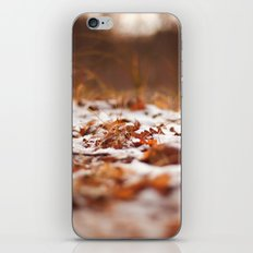 good things in life iPhone & iPod Skin