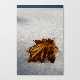 crisp morning Canvas Print